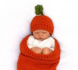 Karotten Cocon
